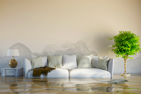 Den sofa and furnishings sit in muddy flood water